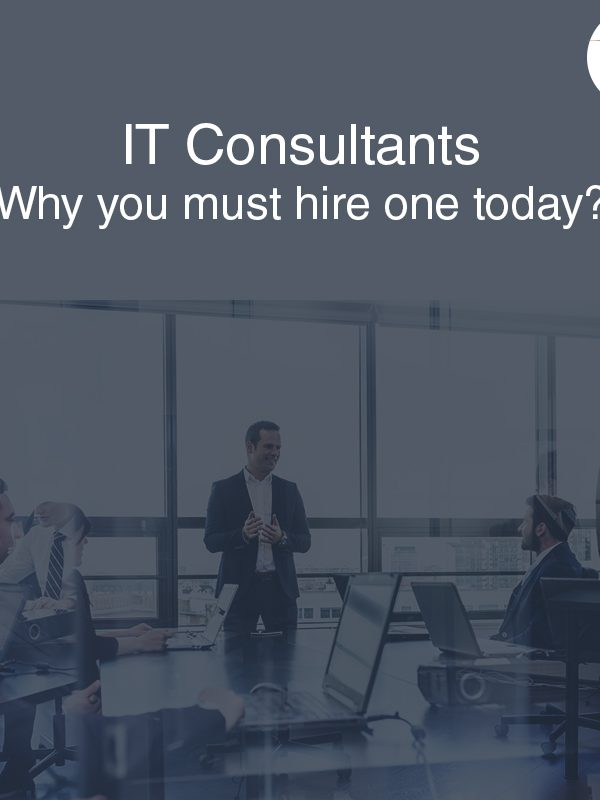IT Consultants